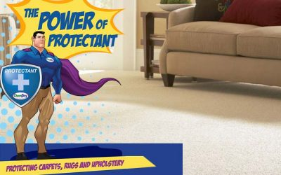 Chem-Dry's Professional Protectant