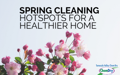 Spring Cleaning Hotspots for a Healthier Home