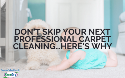 DON'T Skip Your Next Professional Carpet Cleaning…Here's Why